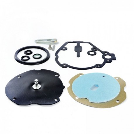 Repair Kit LANDI RENZO LI10 LPG Reducer (AM ASP/TURBO)